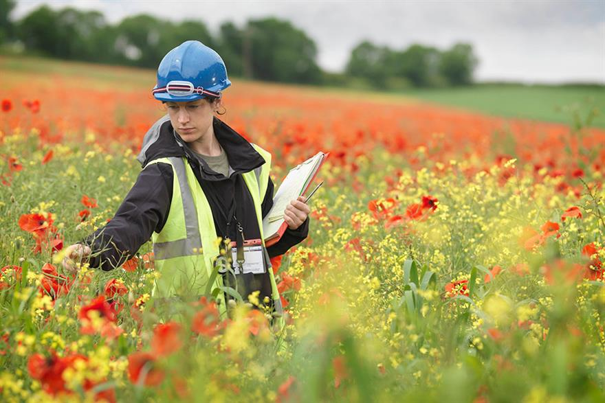 Common Risk Exposures for Environmental Consultants Insurance | FD Beck